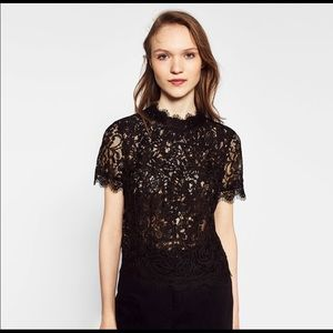 NWT Zara Black Lace Crop Top with zippered back